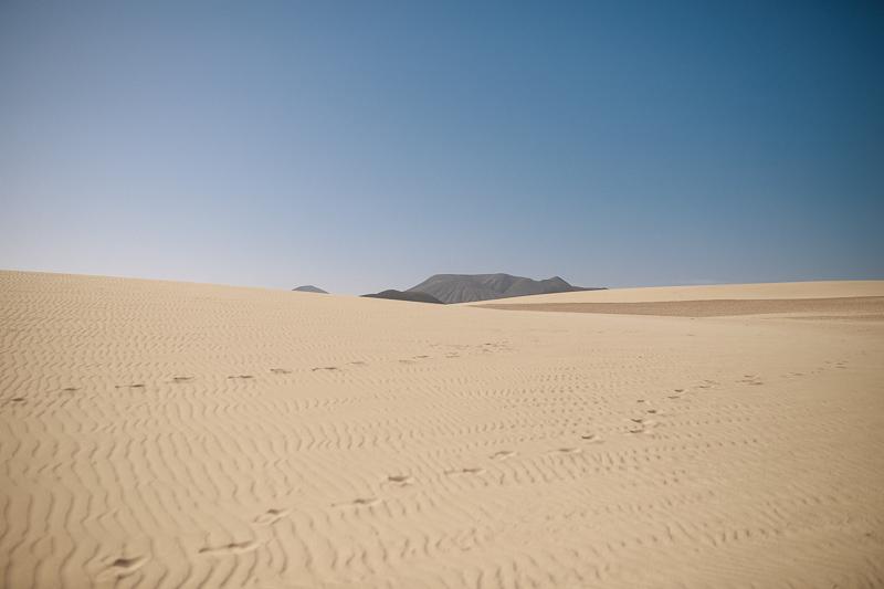 Fuerteventura_800px-8719