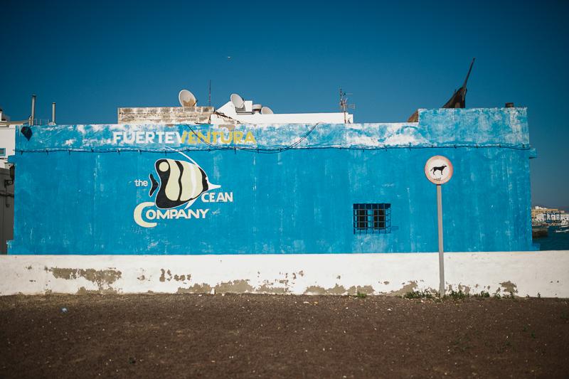 Fuerteventura_800px-8787