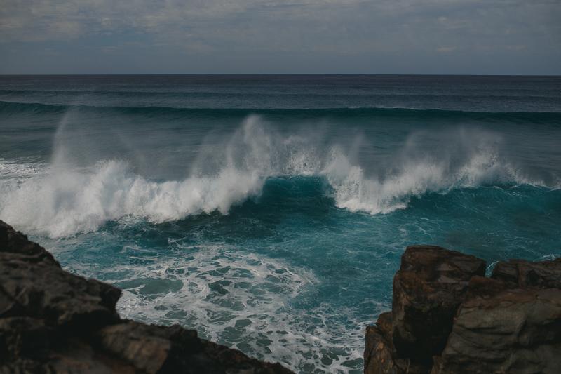 Fuerteventura_800px-8969